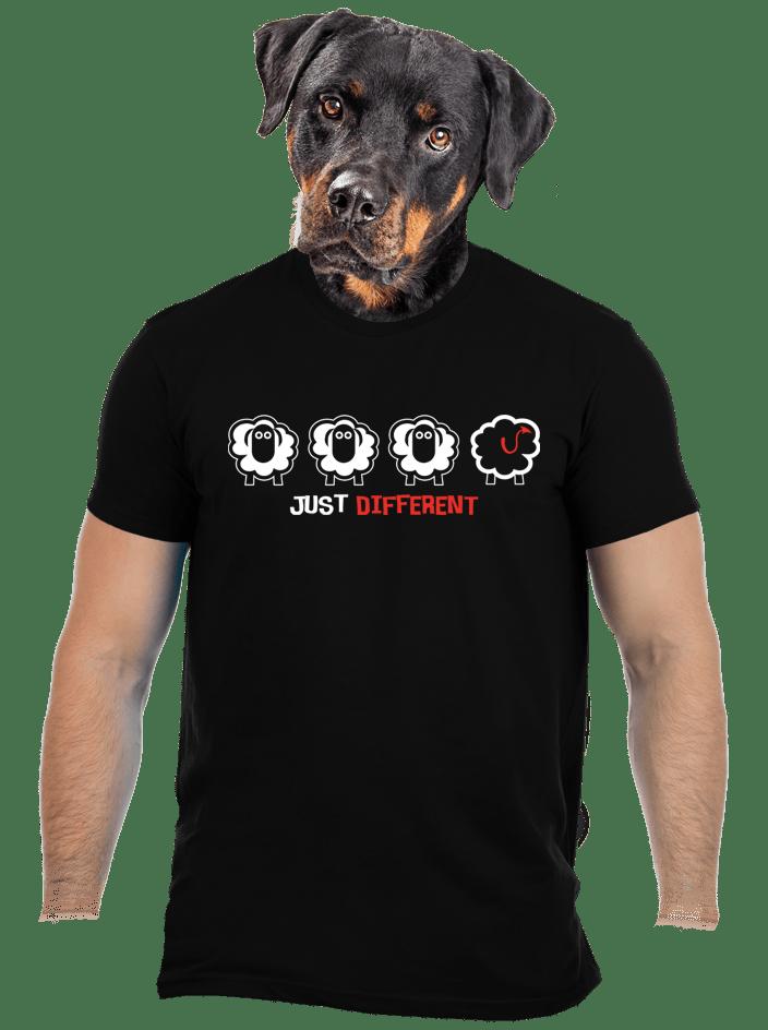 Fekete bárány férfi póló