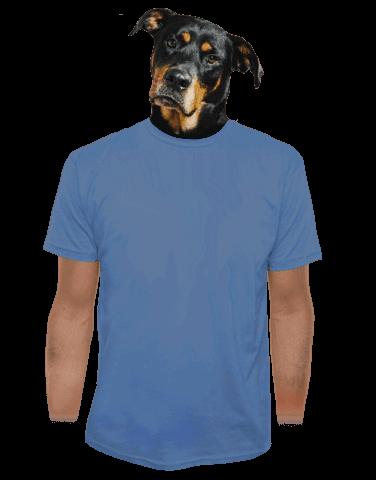 Férfi póló szürkés-kék