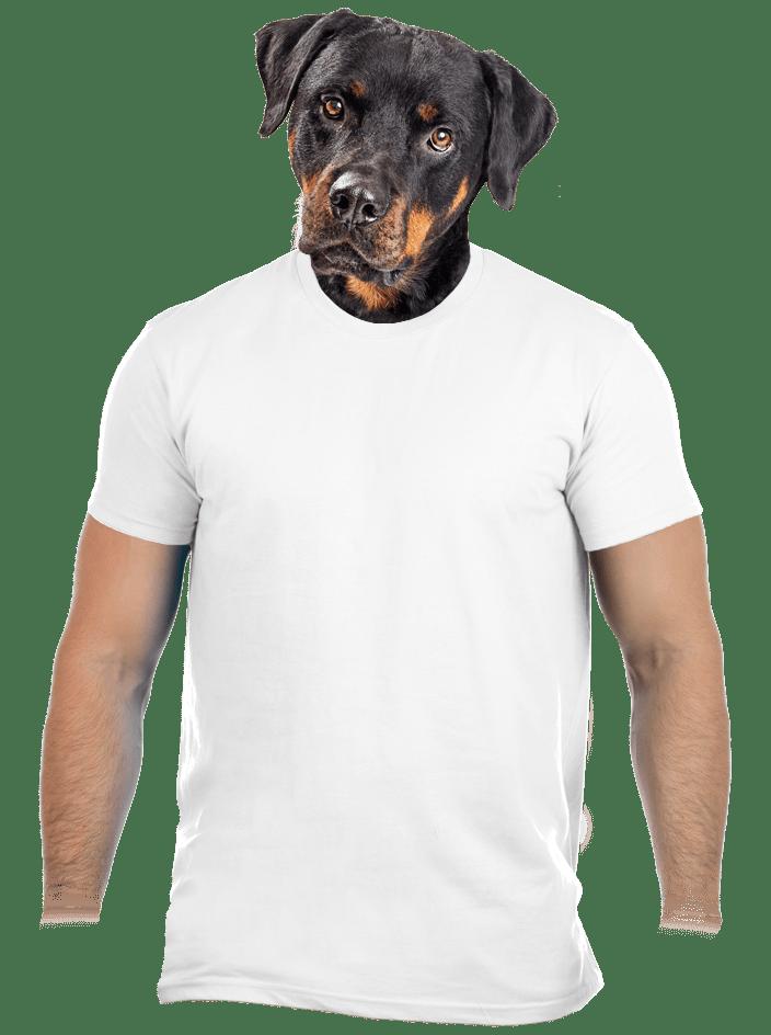 Férfi póló fehér