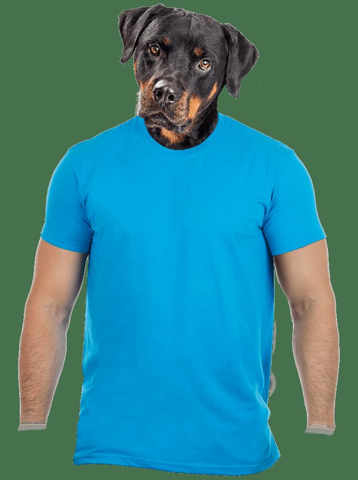 Férfi póló türkizkék