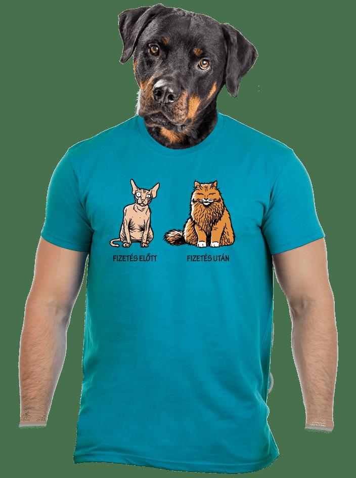 Fizetés férfi póló