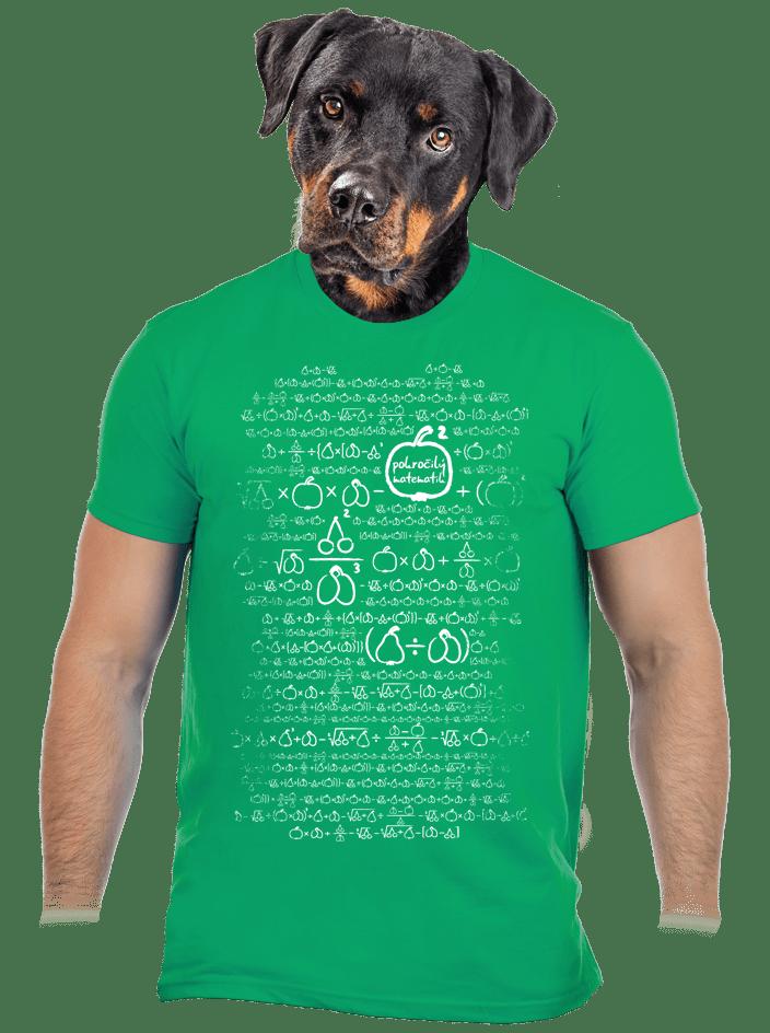 Matematikus férfi póló zöld